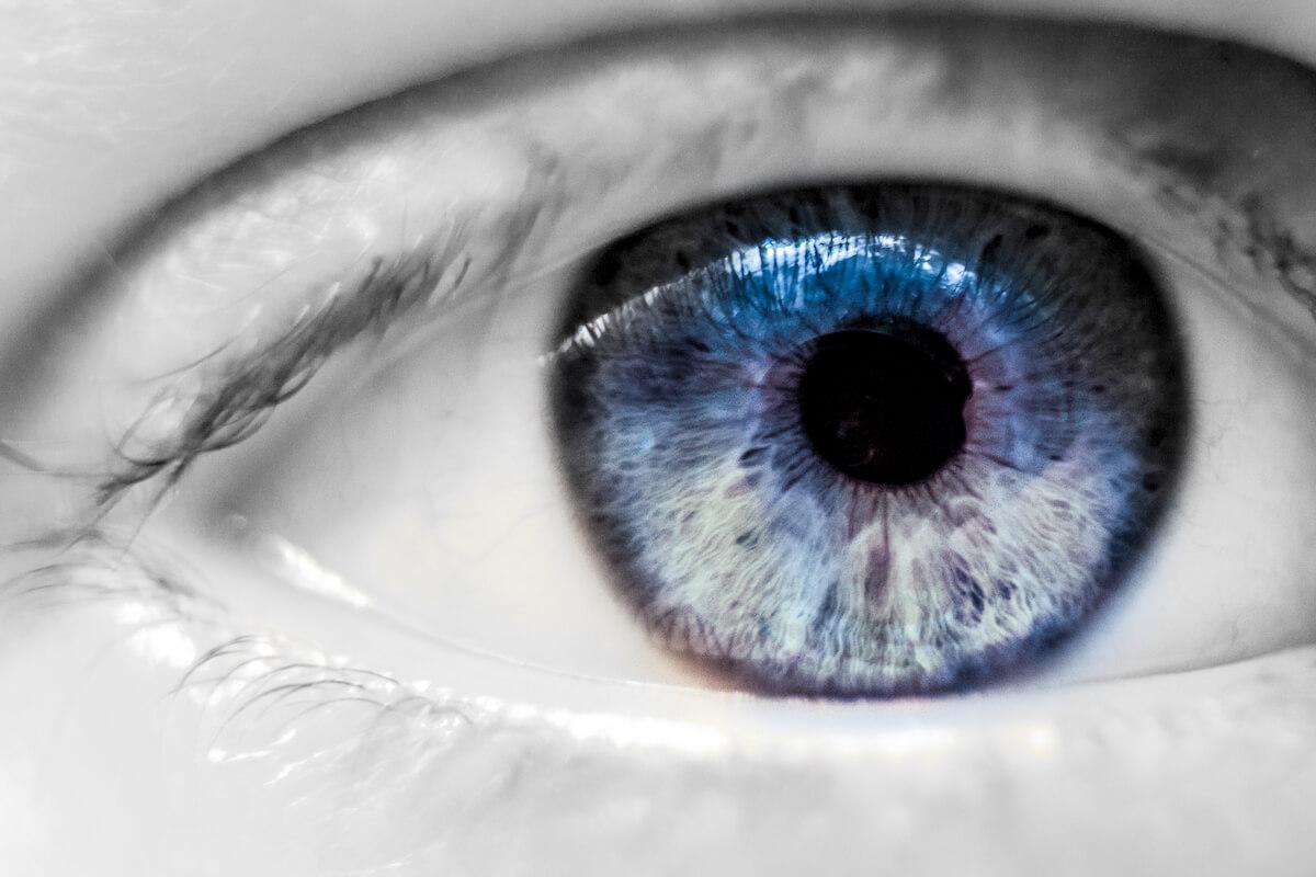 Weetjes over ogen