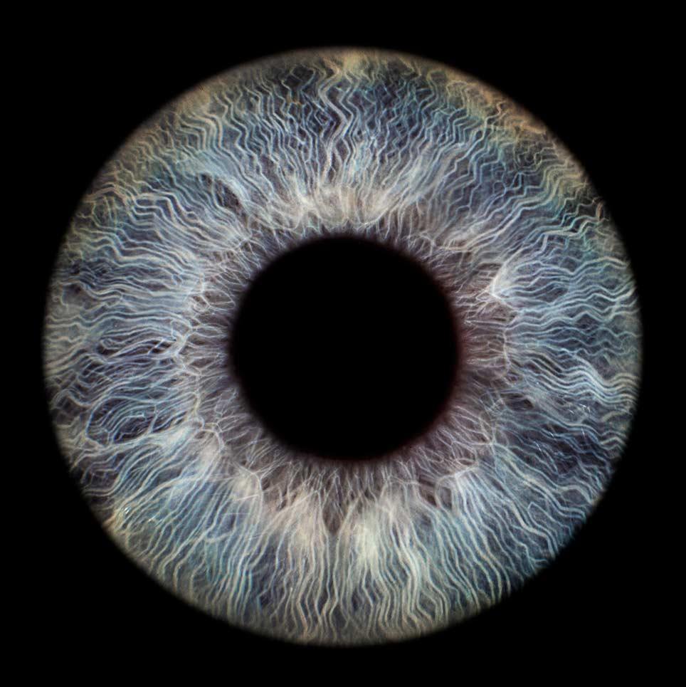 Fotografie van blauwe iris