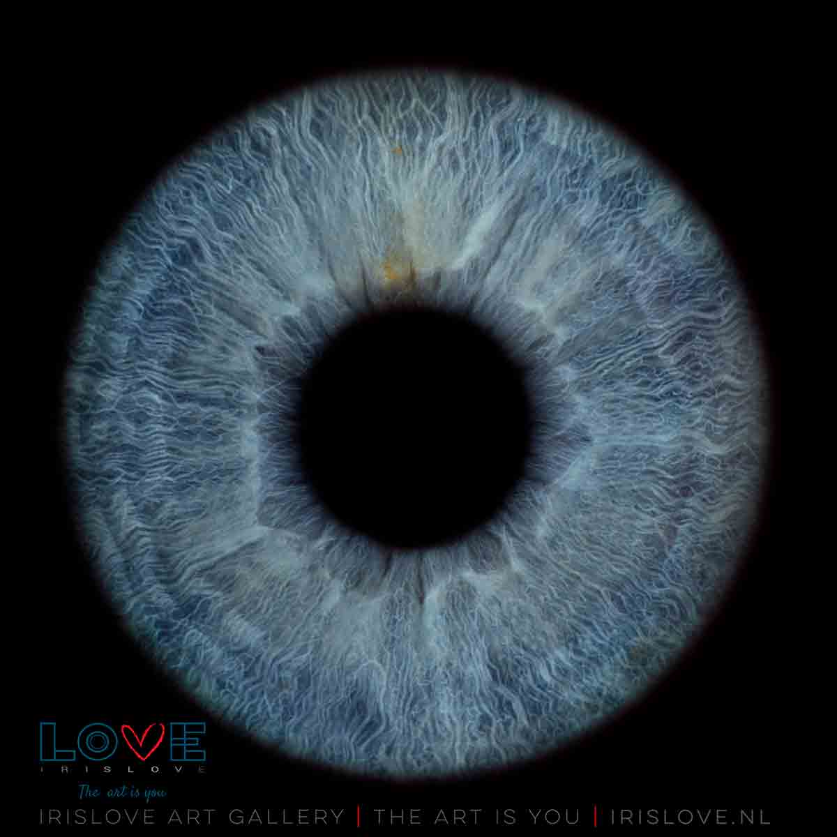 blauwe ogen laten uitkomen
