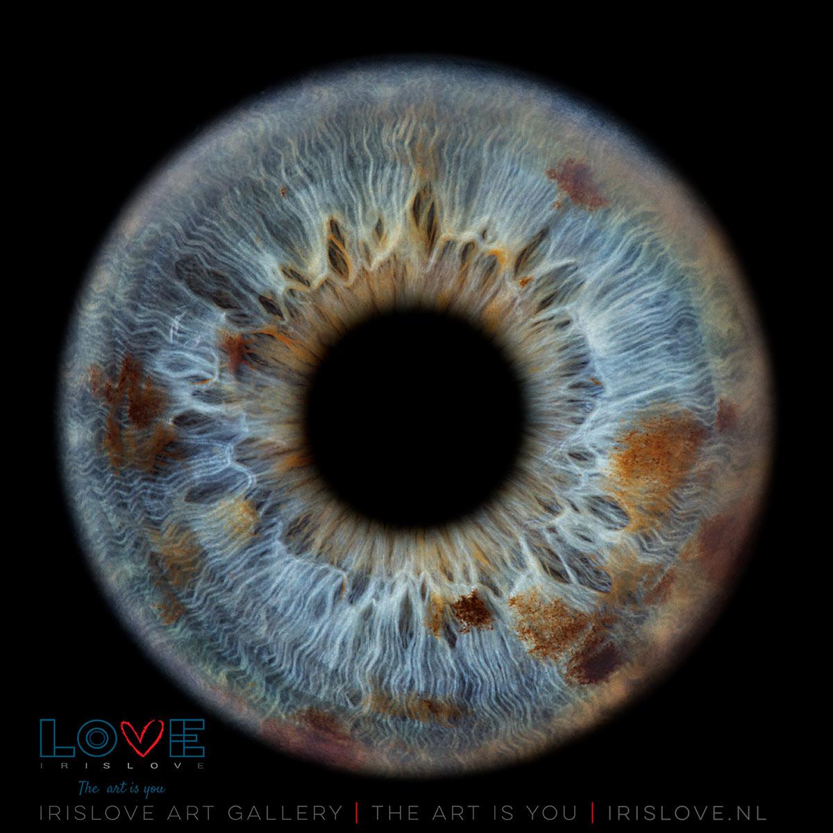 bruine ogen blauwe ogen