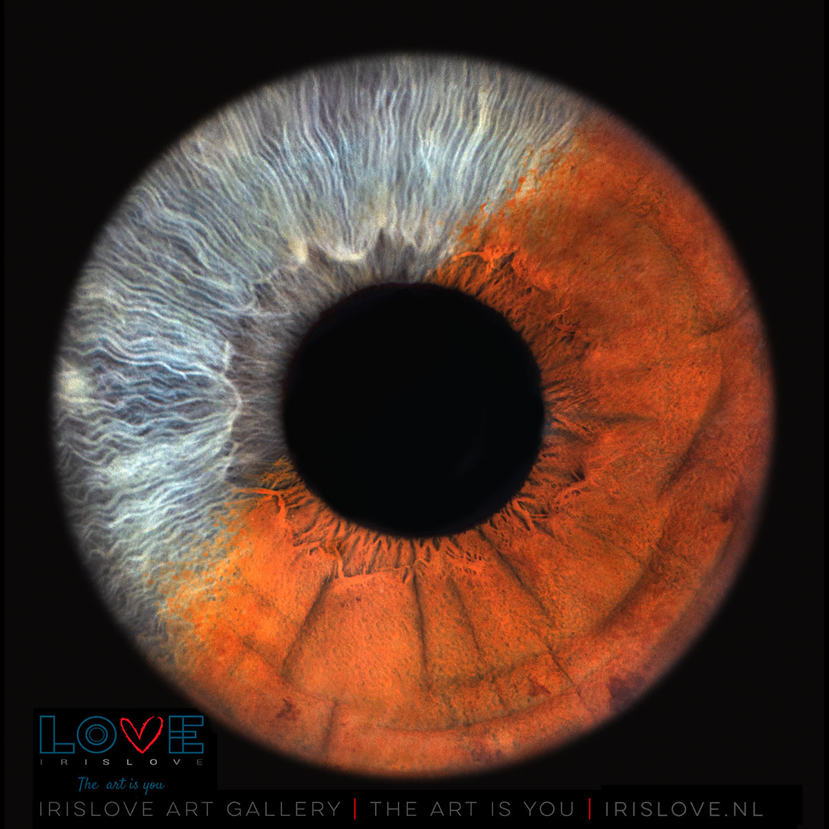 verschillende oogkleuren