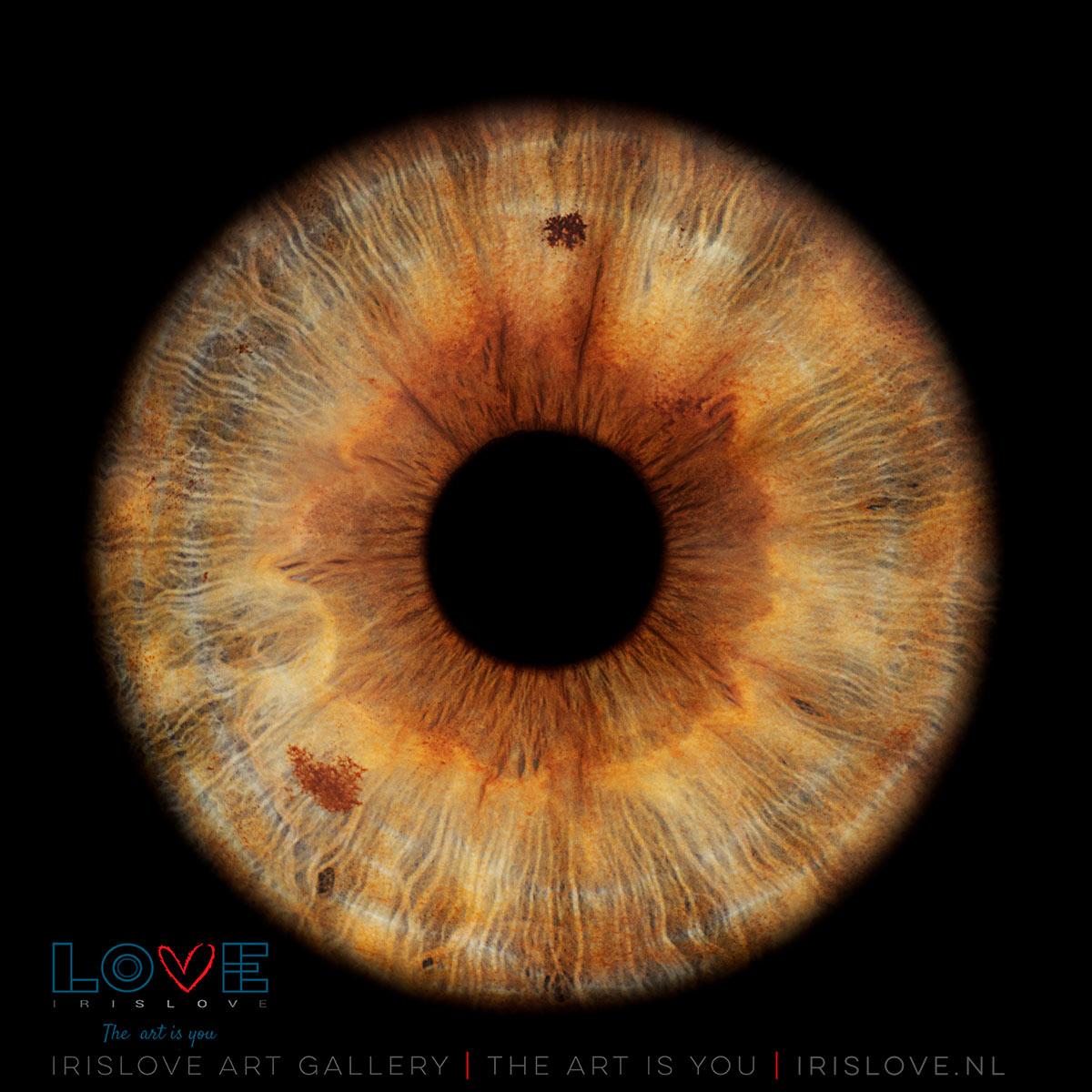 Zeldzame oogkleur