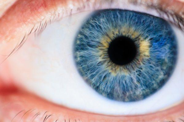 Blauwe ogen dominant